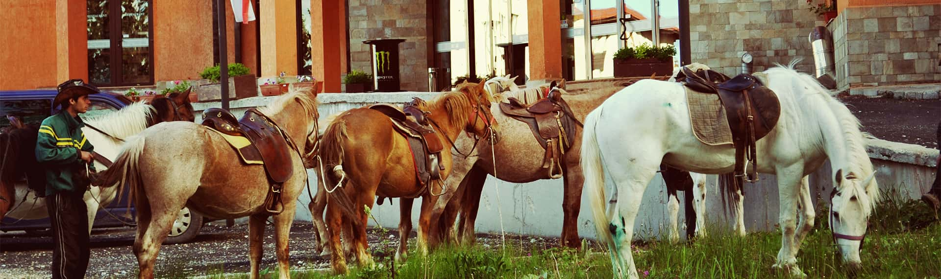 конна езда в пампорово